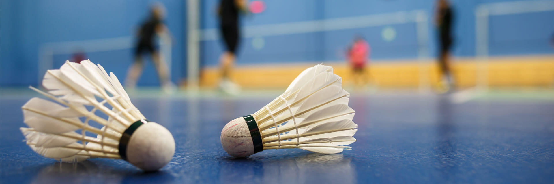 Section badminton